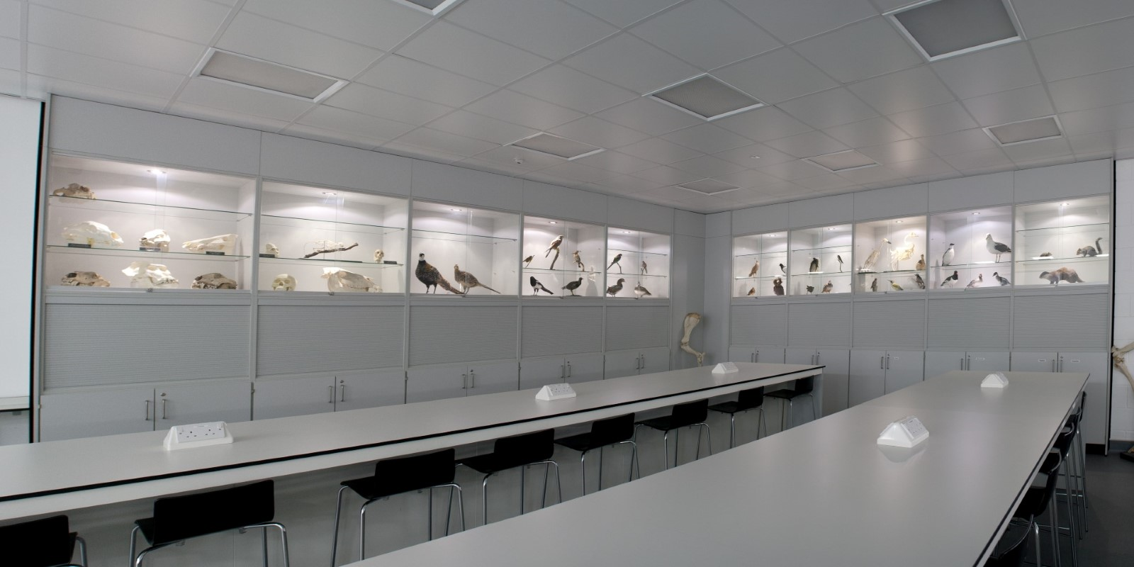University of Derby T102 and T103 - Laboratory Furniture - 13