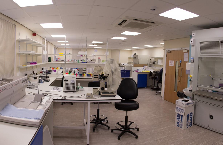 Glenfield Hospital Respiratory Hospital Labs S10 Amp S19
