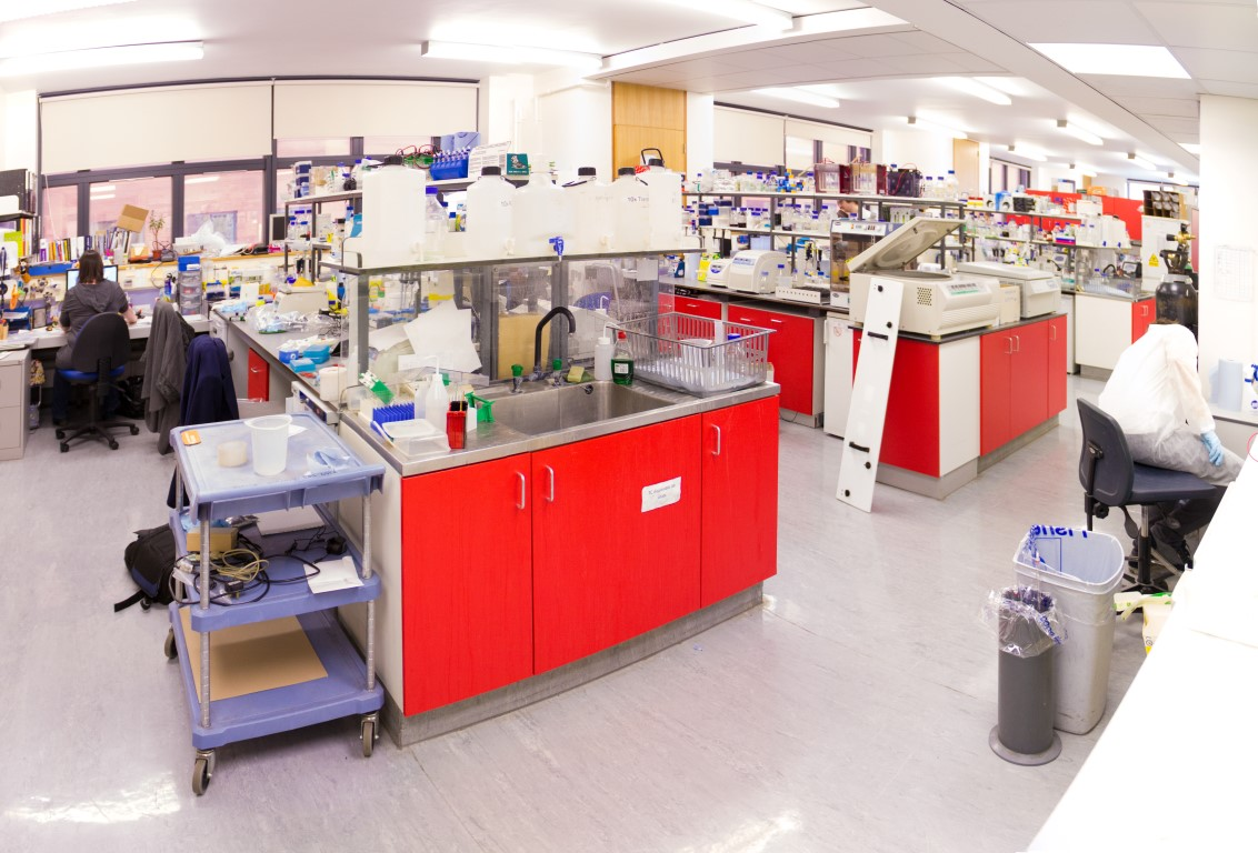 C4946 - MRC Laboratory Furniture-0009